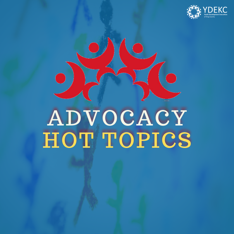 Flyer for Advocacy Hot Topics with YDEKC logo